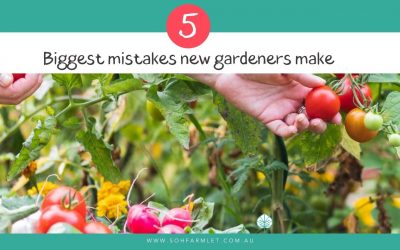 5 Biggest mistakes new gardeners make