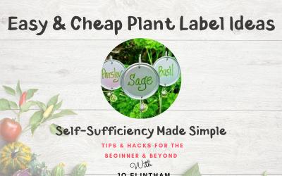 Episode #7 – Easy & Cheap Plant Label Ideas