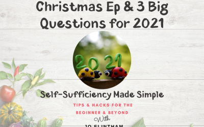 Episode #6 – Christmas Ep & 3 Big Questions for 2021