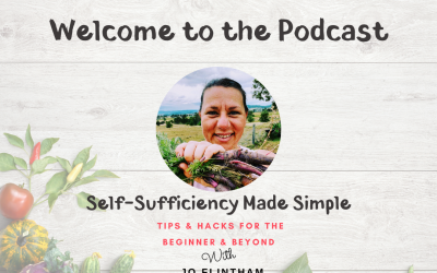 Episode #1 – Welcome to the Podcast