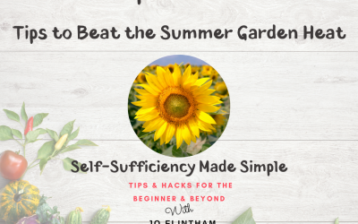Episode #2 – Tips to Beat the Summer Heat