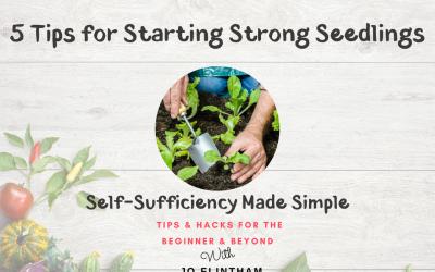 Episode #3 – 5 Tips for Starting Strong Seedlings