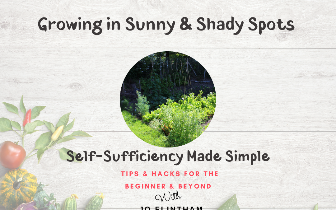 Episode #13 What to Grow in Sunny & Shady Spots