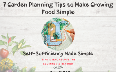 Episode #12 – 7 Garden Planning Tips to Make Growing Food Simple