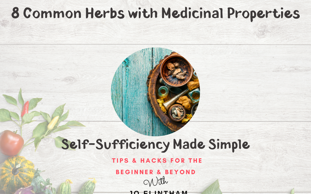 Episode #18 – 8 Common Herbs with Medicinal Properties