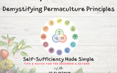 Episode #23 Demystifying Permaculture Principles
